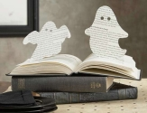 Book Ghost or Ghost Book?